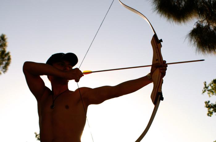 Arcieri compagnia di monza e della brianza associazione sportiva dilettantistica